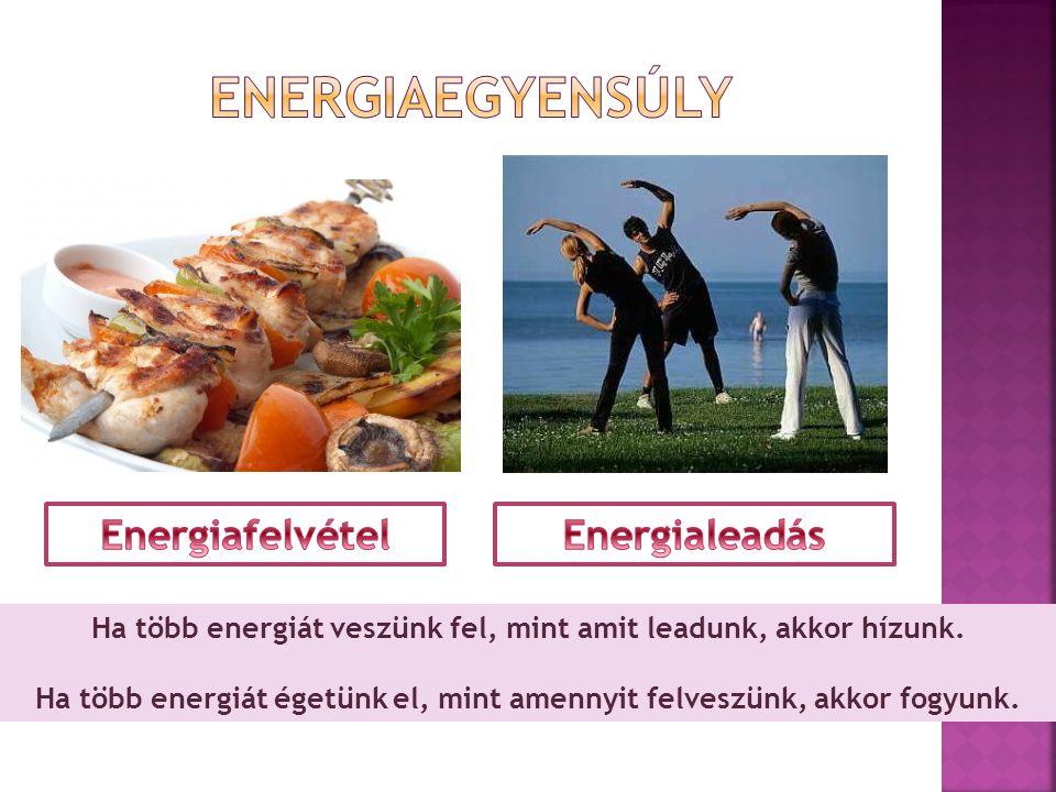 Ha több energiát veszünk fel, mint amit leadunk, akkor hízunk. Ha több energiát égetünk el, mint amennyit felveszünk, akkor fogyunk.
