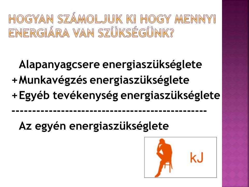 Alapanyagcsere energiaszükséglete +Munkavégzés energiaszükséglete +Egyéb tevékenység energiaszükséglete ----------------------------------------------