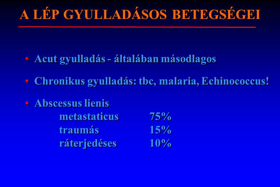 A LÉP GYULLADÁSOS BETEGSÉGEI Acut gyulladás - általában másodlagos Chronikus gyulladás: tbc, malaria, Echinococcus! Abscessus lienis metastaticus 75%