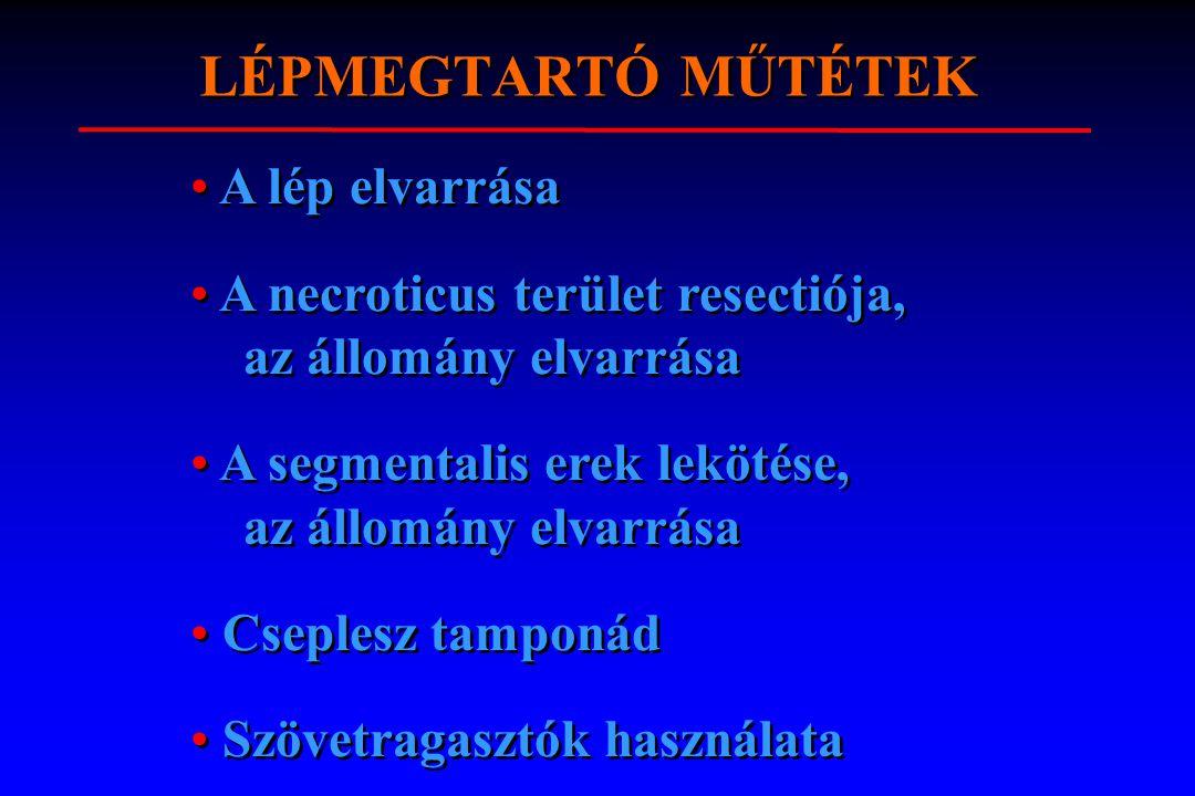 LÉPMEGTARTÓ MŰTÉTEK l 1. A lép elvarrása 2. A necroticus terület resectioja az állomány elvarrása 3. A segmentalis erek lekötése, az állomány elvarrás