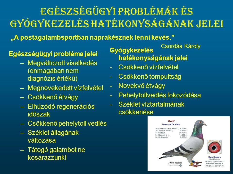 Egészségügyi problémák és gyógykezelés hatékonyságának jelei Egészségügyi probléma jelei –Megváltozott viselkedés (önmagában nem diagnózis értékű) –Me