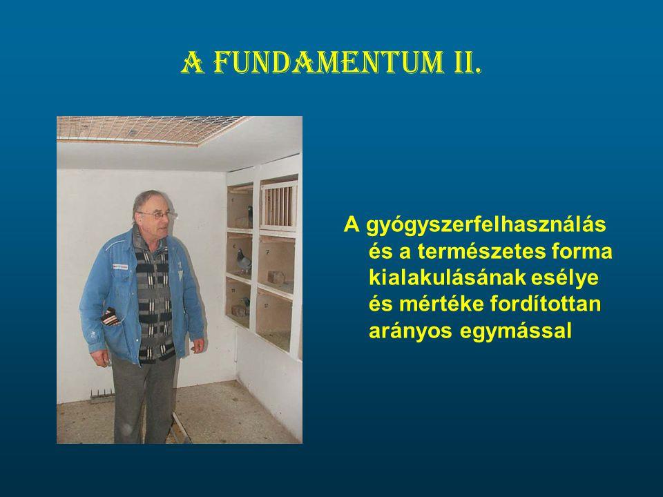 A fundamentum II. A gyógyszerfelhasználás és a természetes forma kialakulásának esélye és mértéke fordítottan arányos egymással