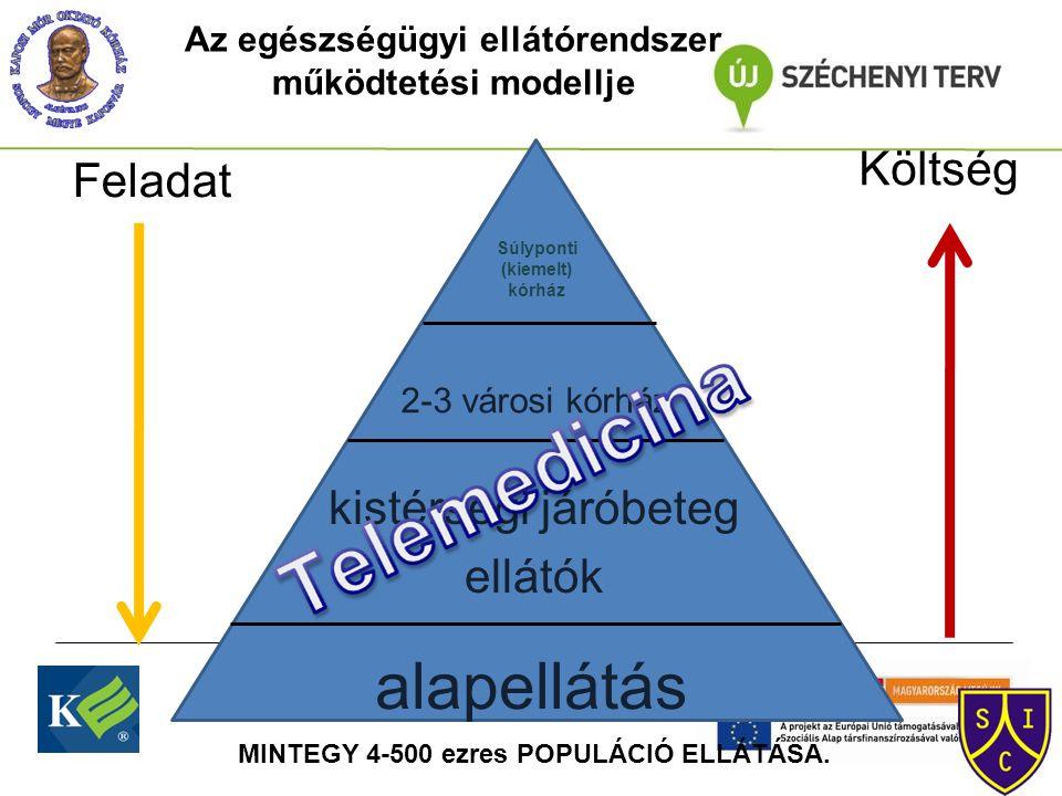 Súlyponti (kiemelt) kórház 2-3 városi kórház kistérségi járóbeteg ellátók alapellátás Feladat Költség Az egészségügyi ellátórendszer működtetési modellje MINTEGY 4-500 ezres POPULÁCIÓ ELLÁTÁSA.