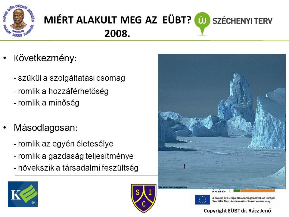 MIÉRT ALAKULT MEG AZ EÜBT. 2008.