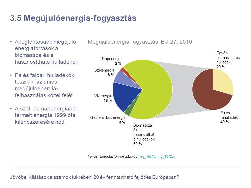 Jövőbeli kilátások a számok tükrében: 20 év fenntartható fejlődés Európában? 3.5 Megújulóenergia-fogyasztás A legfontosabb megújuló energiaforrások a