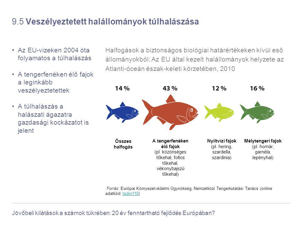 Jövőbeli kilátások a számok tükrében: 20 év fenntartható fejlődés Európában? 9.5 Veszélyeztetett halállományok túlhalászása Az EU-vizeken 2004 óta fol