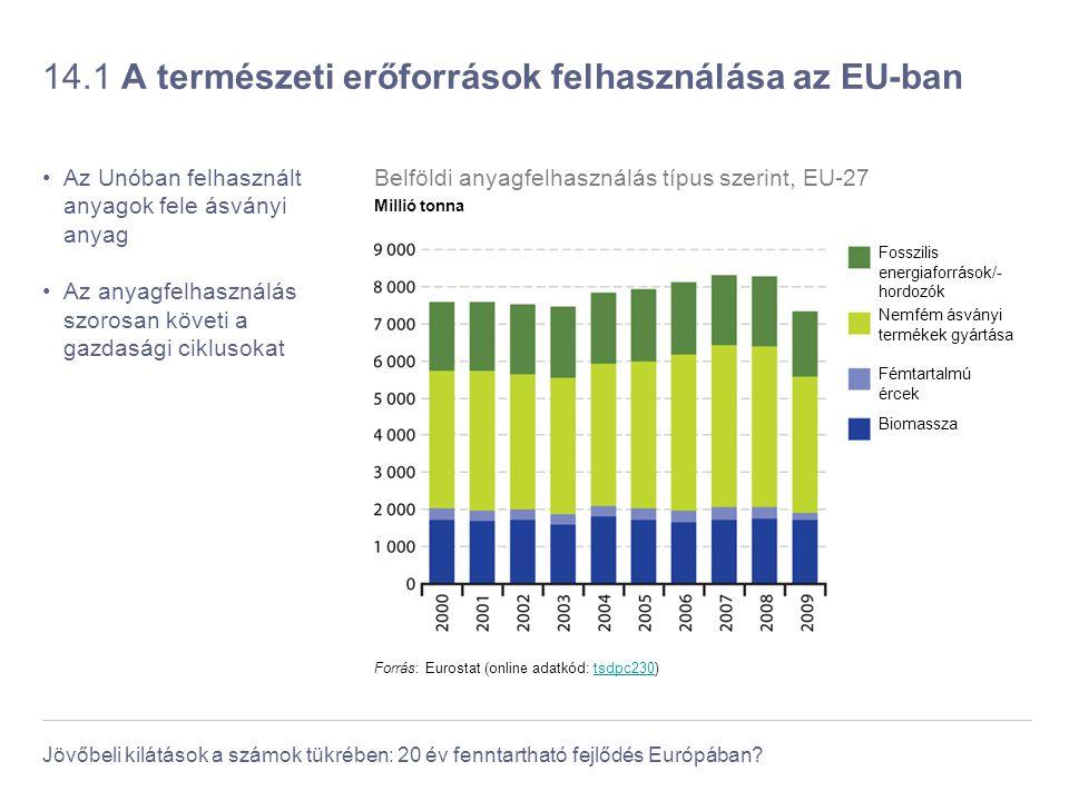 Jövőbeli kilátások a számok tükrében: 20 év fenntartható fejlődés Európában? 14.1 A természeti erőforrások felhasználása az EU-ban Az Unóban felhaszná