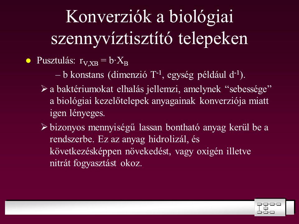Konverziók a biológiai szennyvíztisztító telepeken Pusztulás: r V,XB = b·X B –b konstans (dimenzió T -1, egység például d -1 ).  a baktériumokat elha