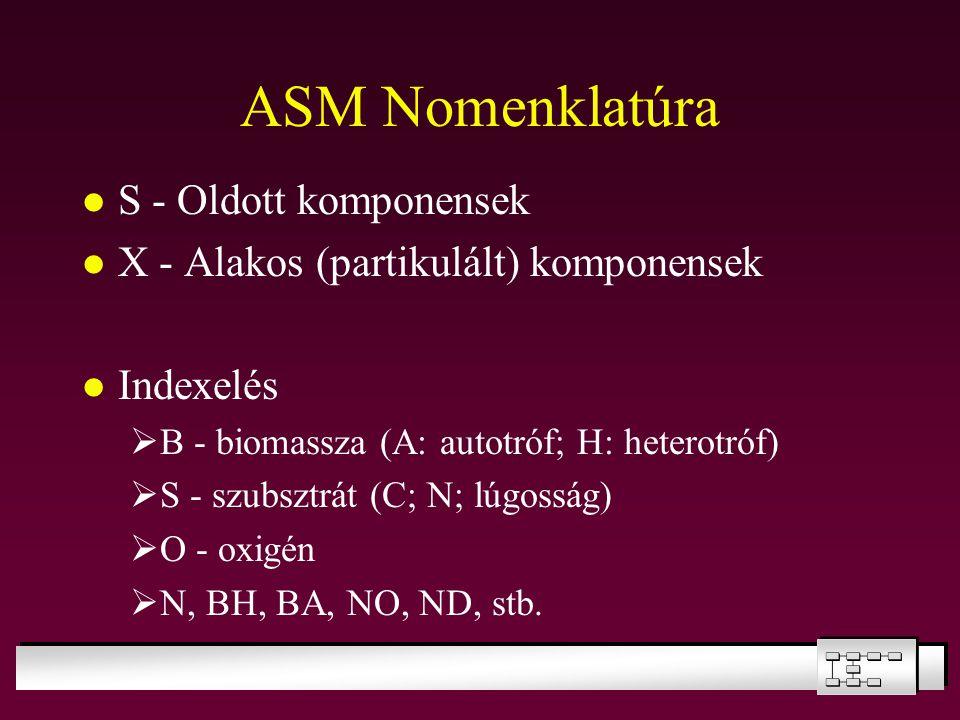 ASM Nomenklatúra S - Oldott komponensek X - Alakos (partikulált) komponensek Indexelés  B - biomassza (A: autotróf; H: heterotróf)  S - szubsztrát (