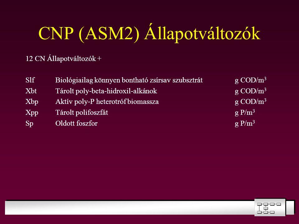 CNP (ASM2) Állapotváltozók 12 CN Állapotváltozók + SlfBiológiailag könnyen bontható zsírsav szubsztrátg COD/m 3 XbtTárolt poly-beta-hidroxil-alkánokg