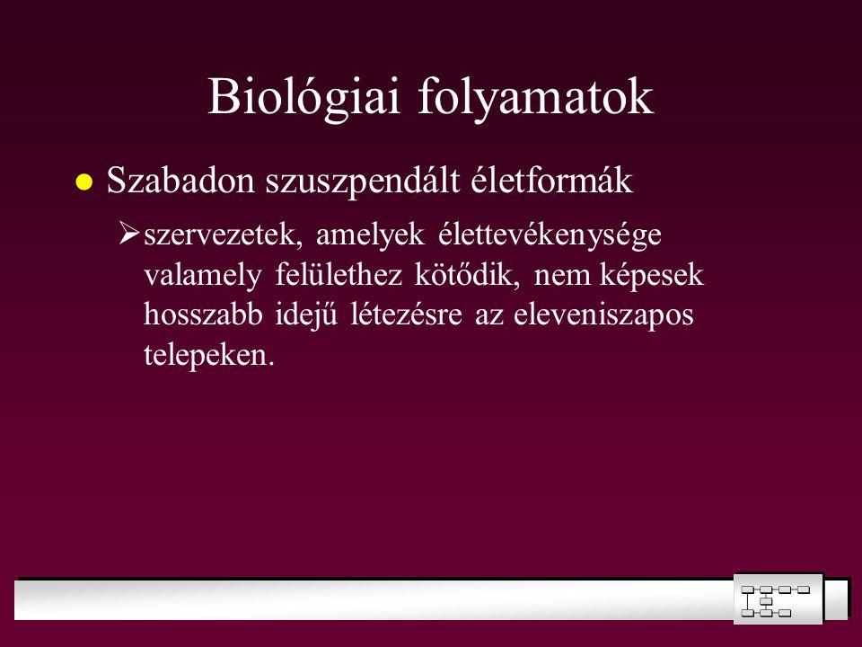 Biológiai folyamatok Szabadon szuszpendált életformák  szervezetek, amelyek élettevékenysége valamely felülethez kötődik, nem képesek hosszabb idejű