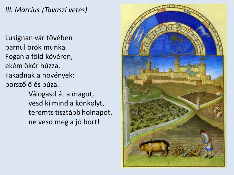 III. Március (Tavaszi vetés) Lusignan vár tövében barnul örök munka. Fogan a föld kövéren, ekém ökör húzza. Fakadnak a növények: borszőlő és búza. Vál