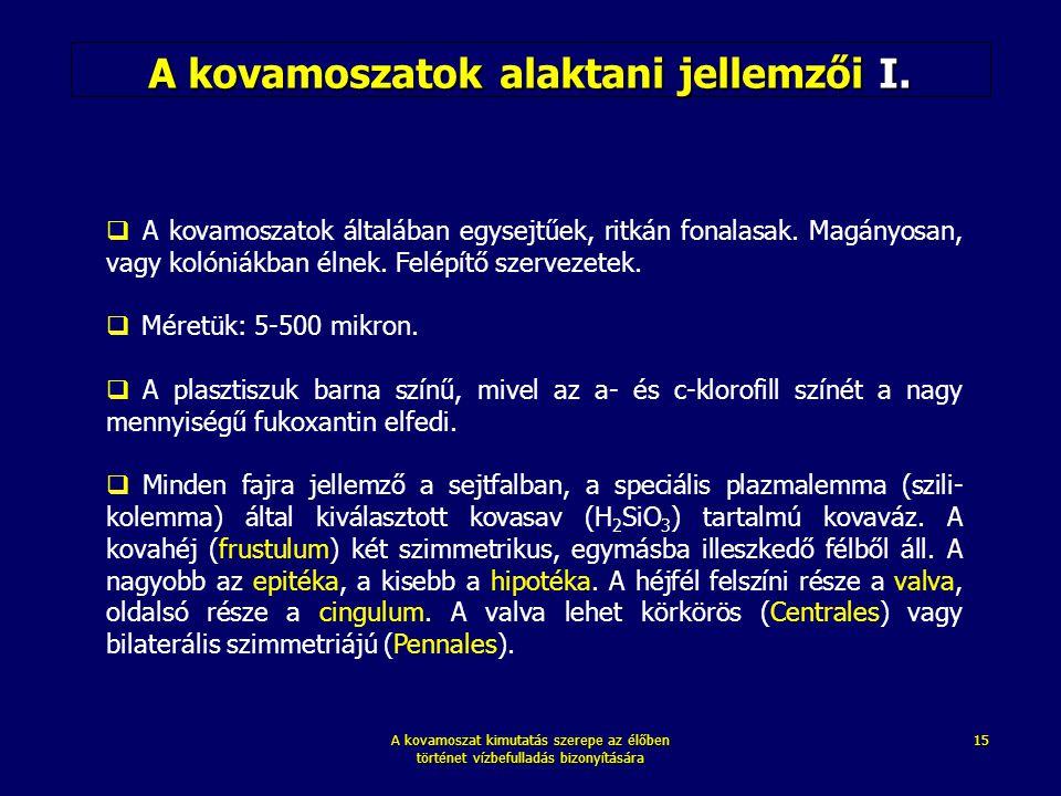 A kovamoszat kimutatás szerepe az élőben történet vízbefulladás bizonyítására 15 A kovamoszatok alaktani jellemzői I.  A kovamoszatok általában egyse