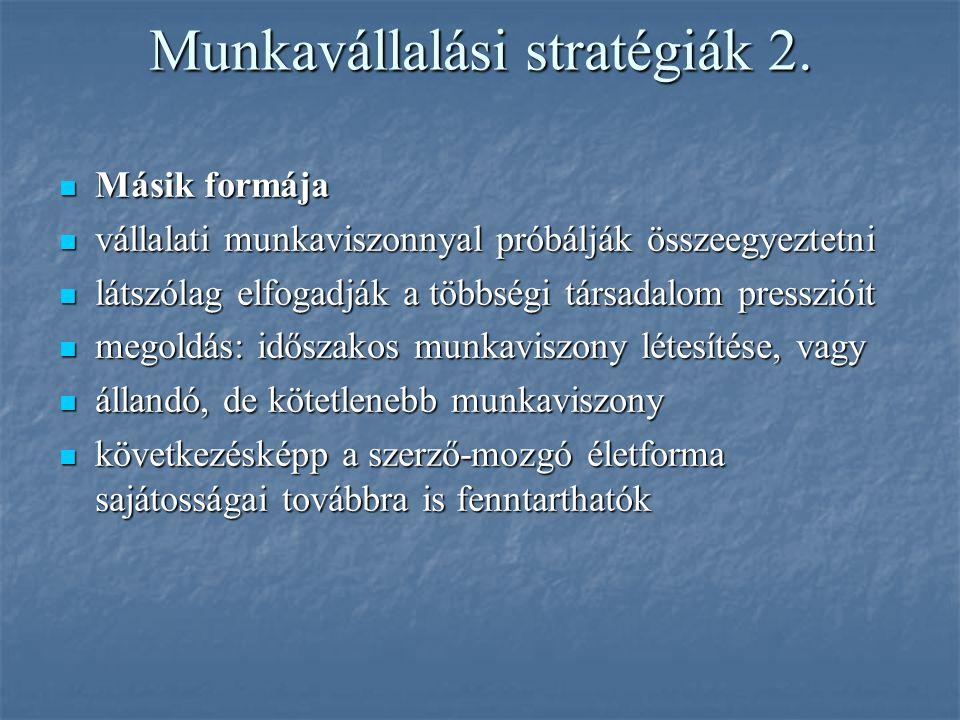 Munkavállalási stratégiák 2. Másik formája Másik formája vállalati munkaviszonnyal próbálják összeegyeztetni vállalati munkaviszonnyal próbálják össze