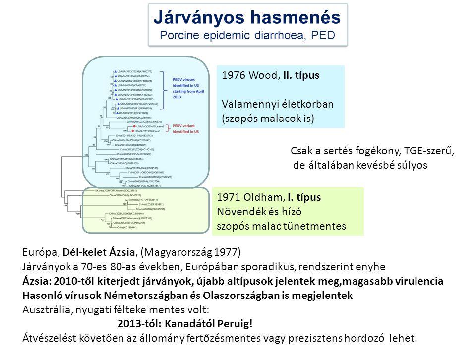 Európa, Dél-kelet Ázsia, (Magyarország 1977) Járványok a 70-es 80-as években, Európában sporadikus, rendszerint enyhe Ázsia: 2010-től kiterjedt járván
