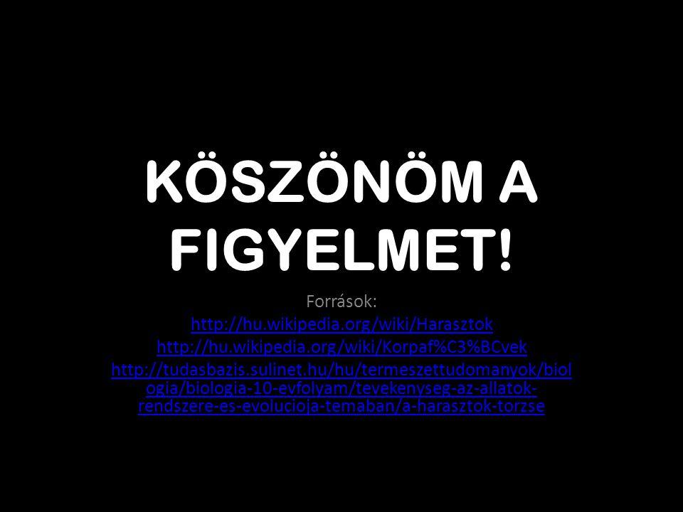 KÖSZÖNÖM A FIGYELMET! Források: http://hu.wikipedia.org/wiki/Harasztok http://hu.wikipedia.org/wiki/Korpaf%C3%BCvek http://tudasbazis.sulinet.hu/hu/te