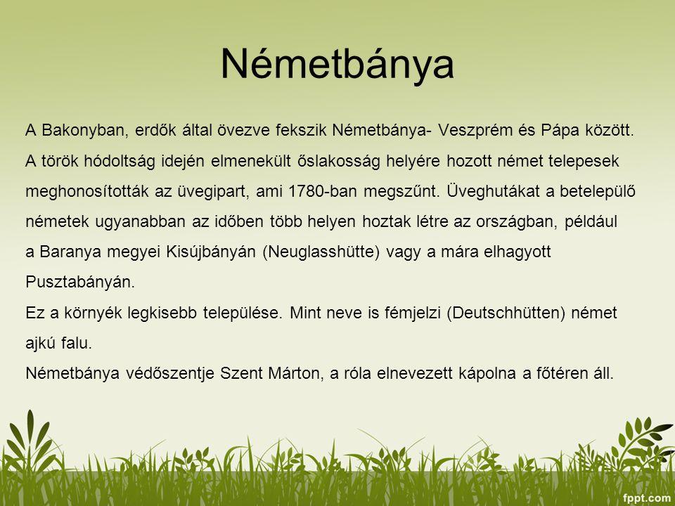 Németbánya A Bakonyban, erdők által övezve fekszik Németbánya- Veszprém és Pápa között. A török hódoltság idején elmenekült őslakosság helyére hozott