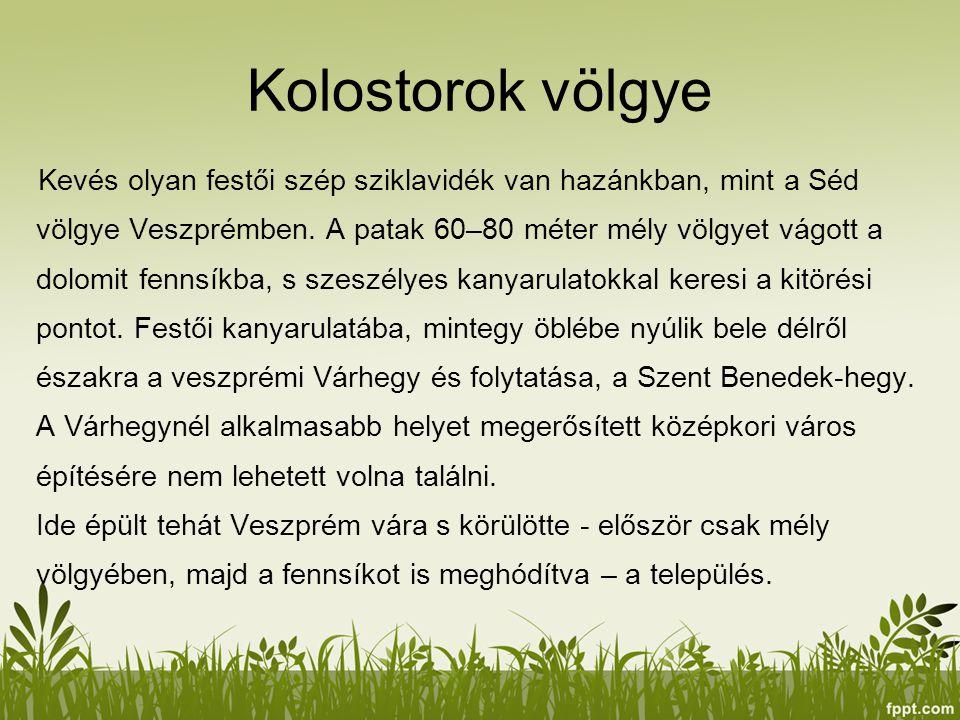 Kolostorok völgye Kevés olyan festői szép sziklavidék van hazánkban, mint a Séd völgye Veszprémben. A patak 60–80 méter mély völgyet vágott a dolomit