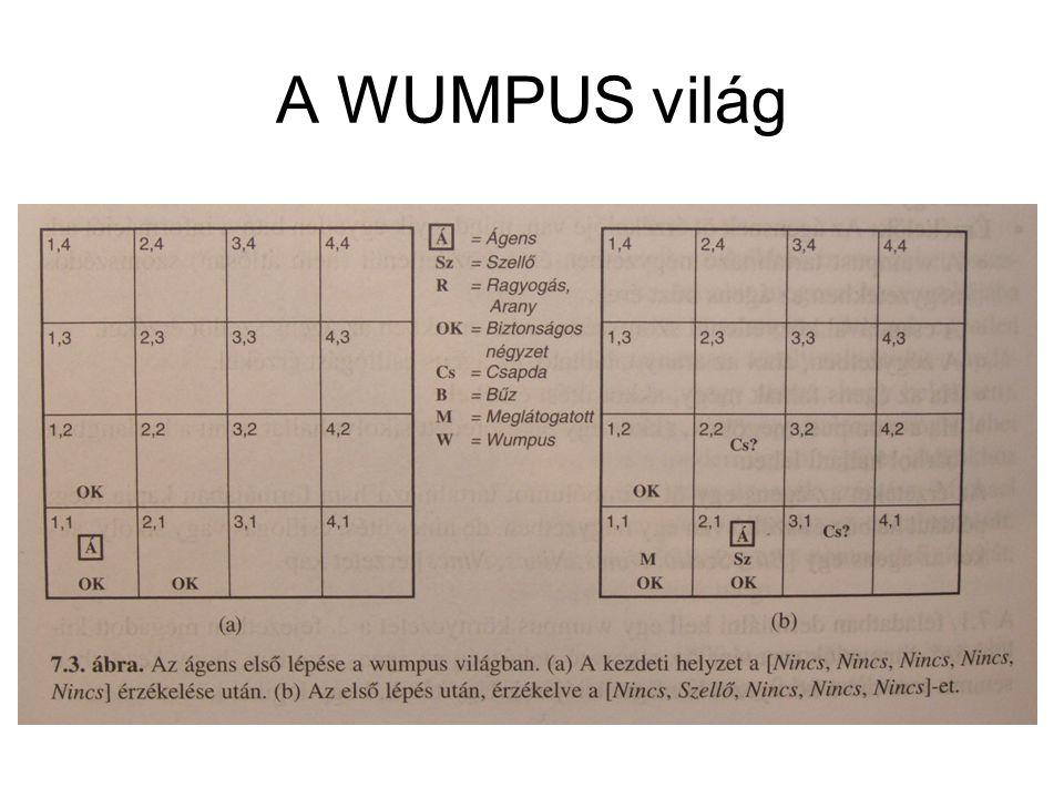 A WUMPUS világ