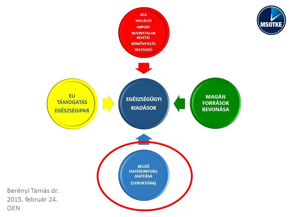 EGÉSZSÉGÜGYI KIADÁSOK ÁFA INFLÁCIÓ IMPORT BIZONYTALAN BEVÉTEL BÉRKÖVETELÉS RECESSZIÓ MAGÁN FORRÁSOK BEVONÁSA BELSŐ HATÉKONYSÁG JAVÍTÁSA (STRUKTÚRA) EU