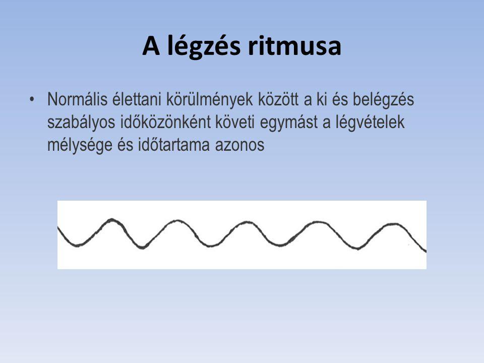 A légzés ritmusa Normális élettani körülmények között a ki és belégzés szabályos időközönként követi egymást a légvételek mélysége és időtartama azono