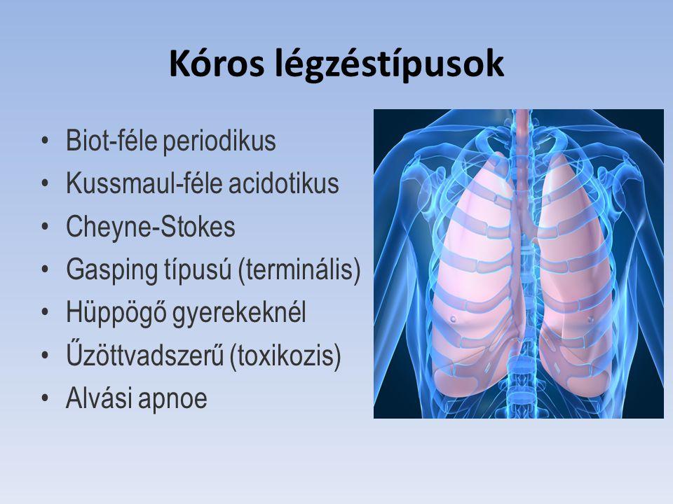 Kóros légzéstípusok Biot-féle periodikus Kussmaul-féle acidotikus Cheyne-Stokes Gasping típusú (terminális) Hüppögő gyerekeknél Űzöttvadszerű (toxikoz