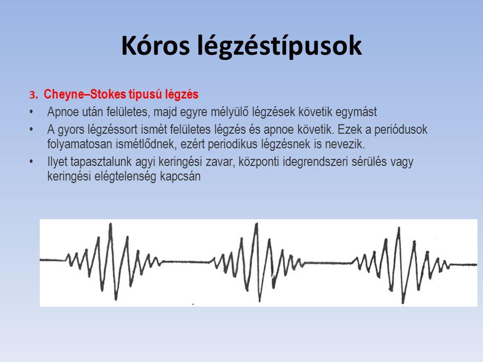Kóros légzéstípusok 3. Cheyne–Stokes típusú légzés Apnoe után felületes, majd egyre mélyülő légzések követik egymást A gyors légzéssort ismét felülete