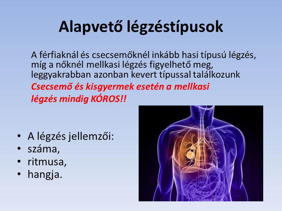 Alapvető légzéstípusok A férfiaknál és csecsemőknél inkább hasi típusú légzés, míg a nőknél mellkasi légzés figyelhető meg, leggyakrabban azonban keve