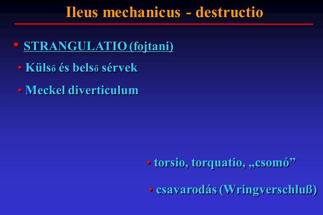 """STRANGULATIO (fojtani) Ileus mechanicus - destructio Küls ő és bels ő sérvek Meckel diverticulum torsio, torquatio, """"csomó"""" csavarodás (Wringverschlu"""