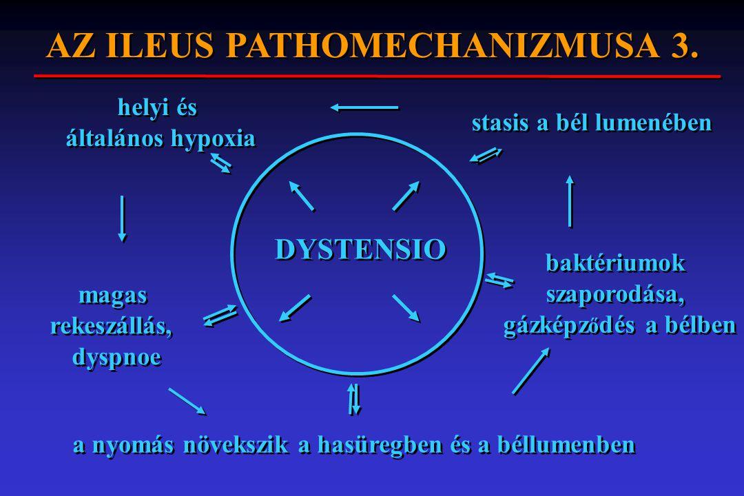 DYSTENSIO a nyomás növekszik a hasüregben és a béllumenben baktériumok szaporodása, gázképz ő dés a bélben stasis a bél lumenében helyi és általános h