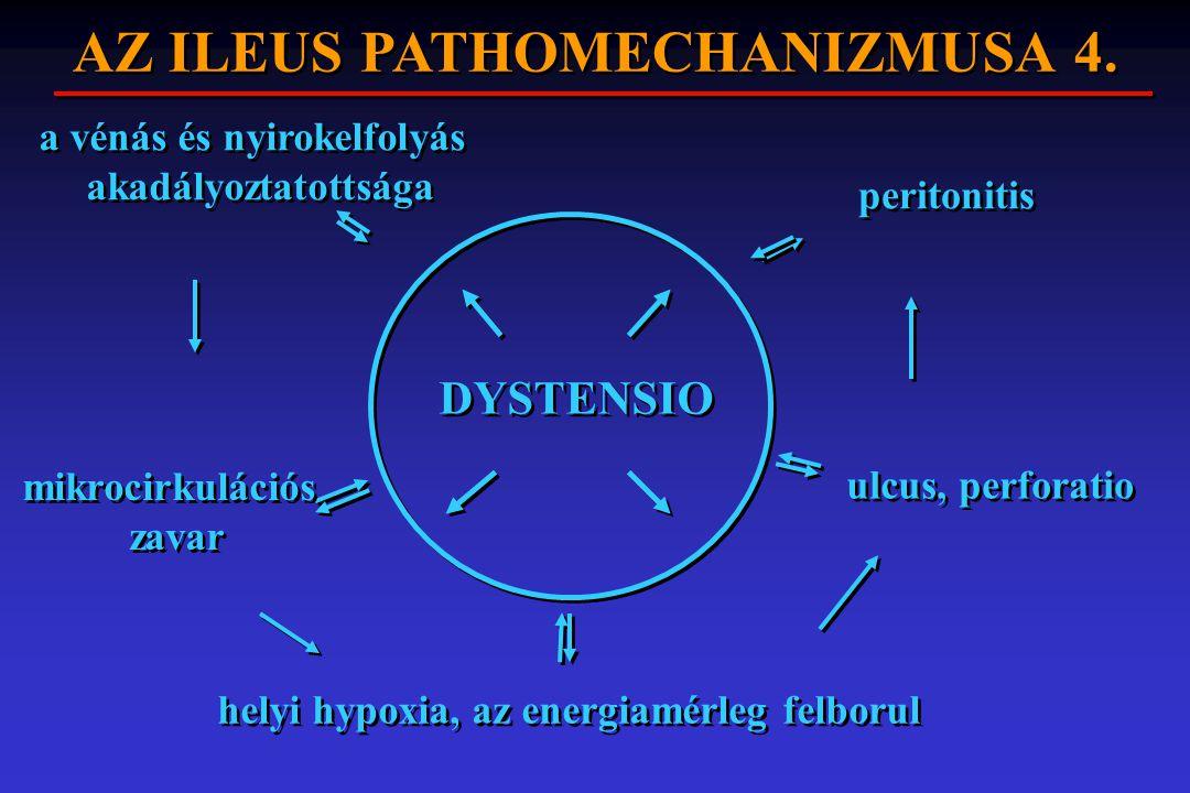 DYSTENSIO helyi hypoxia, az energiamérleg felborul ulcus, perforatio peritonitis a vénás és nyirokelfolyás akadályoztatottsága mikrocirkulációs zavar
