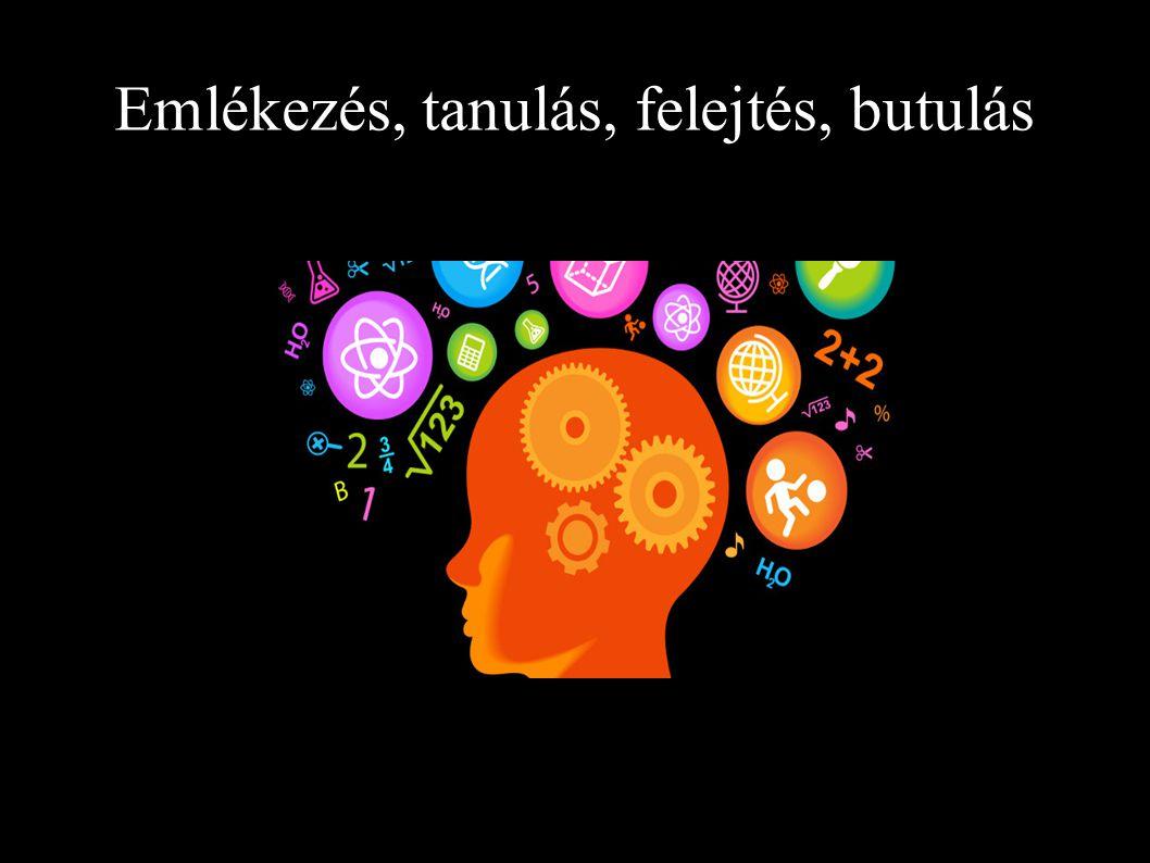 Emlékezés, tanulás, felejtés, butulás
