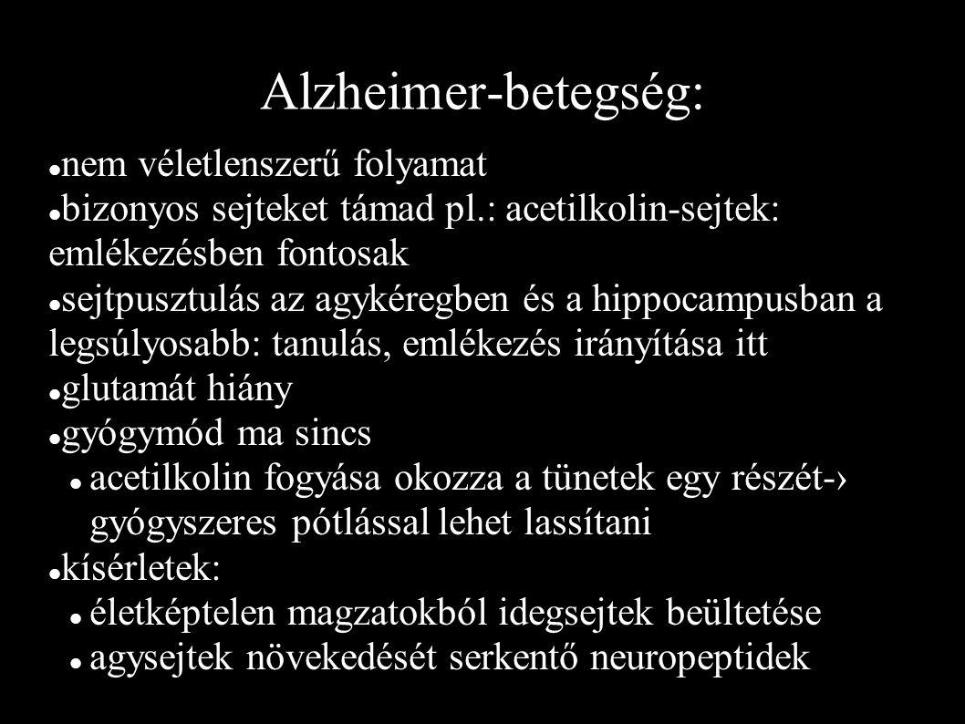 Alzheimer-betegség: nem véletlenszerű folyamat bizonyos sejteket támad pl.: acetilkolin-sejtek: emlékezésben fontosak sejtpusztulás az agykéregben és a hippocampusban a legsúlyosabb: tanulás, emlékezés irányítása itt glutamát hiány gyógymód ma sincs acetilkolin fogyása okozza a tünetek egy részét-› gyógyszeres pótlással lehet lassítani kísérletek: életképtelen magzatokból idegsejtek beültetése agysejtek növekedését serkentő neuropeptidek