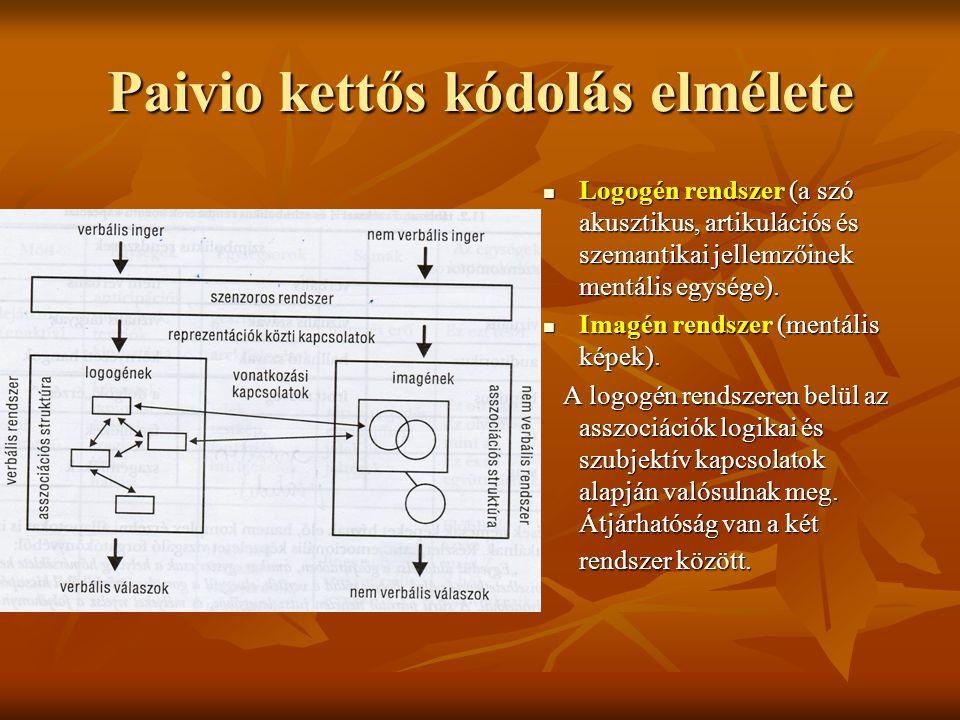 Paivio kettős kódolás elmélete Logogén rendszer (a szó akusztikus, artikulációs és szemantikai jellemzőinek mentális egysége). Logogén rendszer (a szó