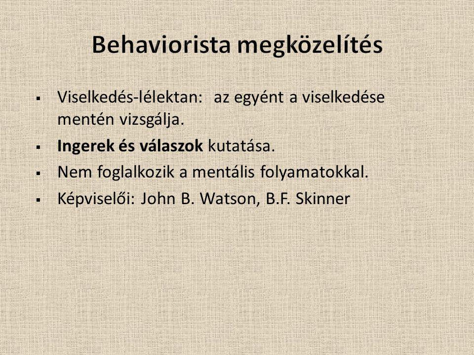  A mentális folyamatok tanulmányozásával foglalkozik (pl.