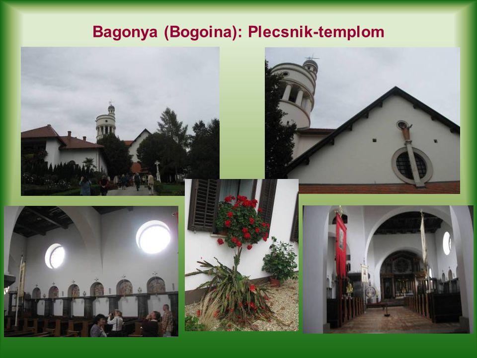 Bagonya (Bogoina): Plecsnik-templom