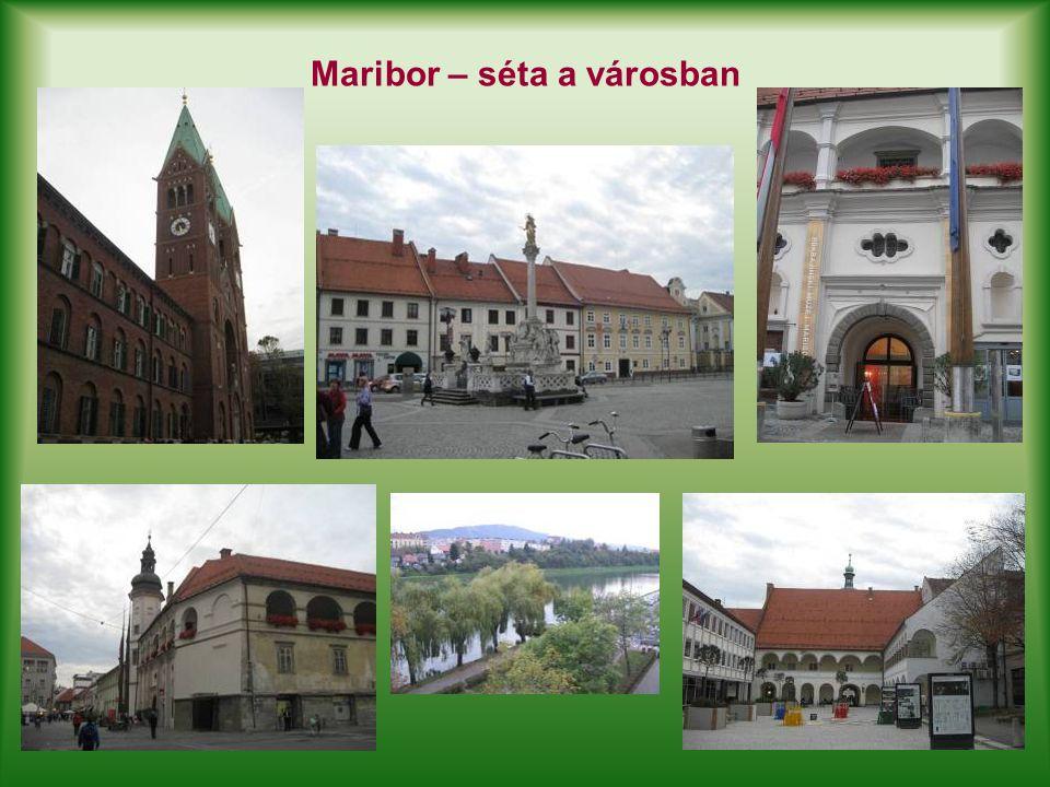 Maribor – séta a városban