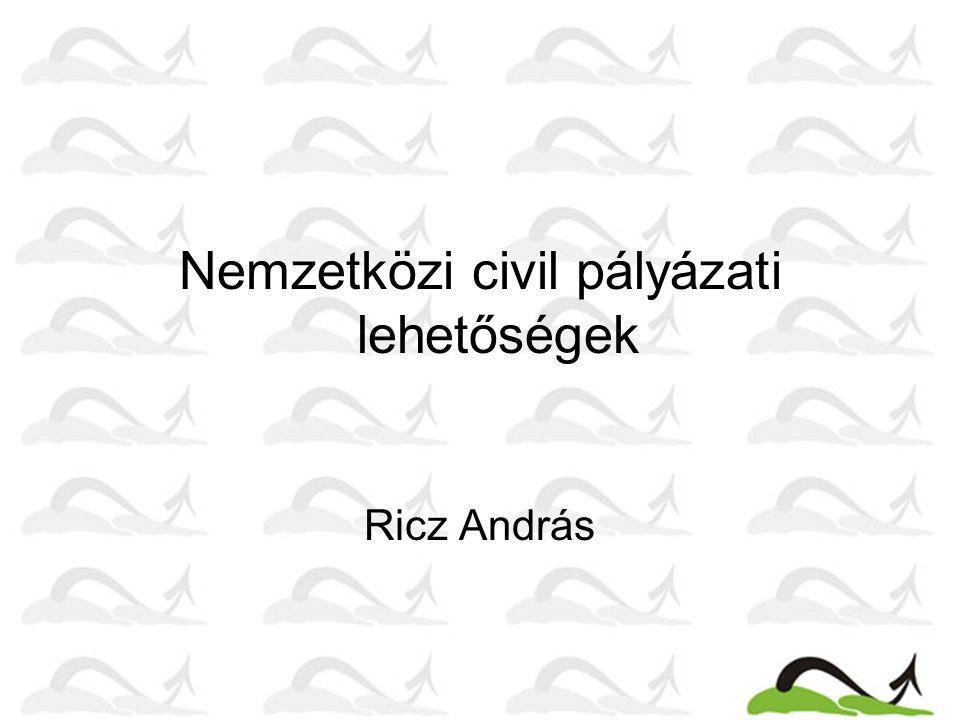 Nemzetközi civil pályázati lehetőségek Ricz András