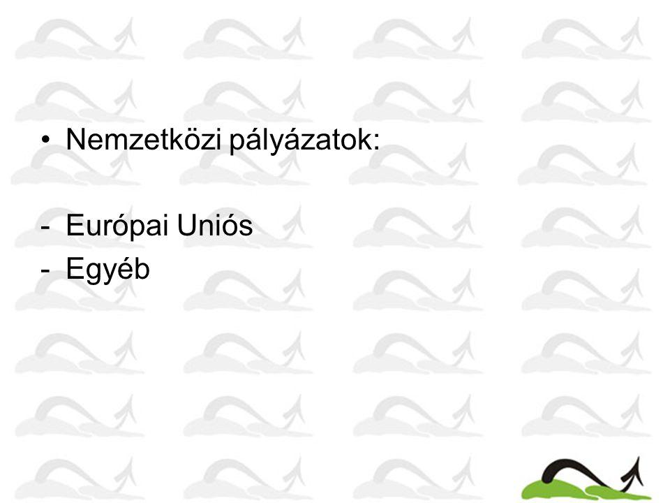 Nemzetközi pályázatok: -Európai Uniós -Egyéb