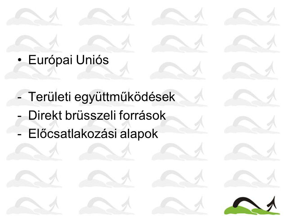 Területi együttműködések - Duna program – a Duna-medence országainak együttműködését támogatja 11 témakörben; - Duna Start program – a Duna Régió Stratégia projekt előkészítő alapja; - Adria-Jón program – nyugat- és dél-balkáni országok, valamint Olaszország területi együttműködéseinek támogatása.