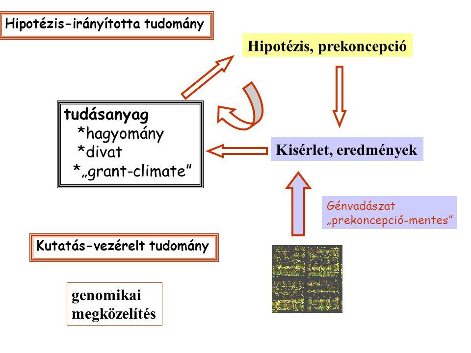 """tudásanyag *hagyomány *divat *""""grant-climate Hipotézis, prekoncepció Kisérlet, eredmények Génvadászat """"prekoncepció-mentes Kutatás-vezérelt tudomány Hipotézis-irányította tudomány genomikai megközelítés"""