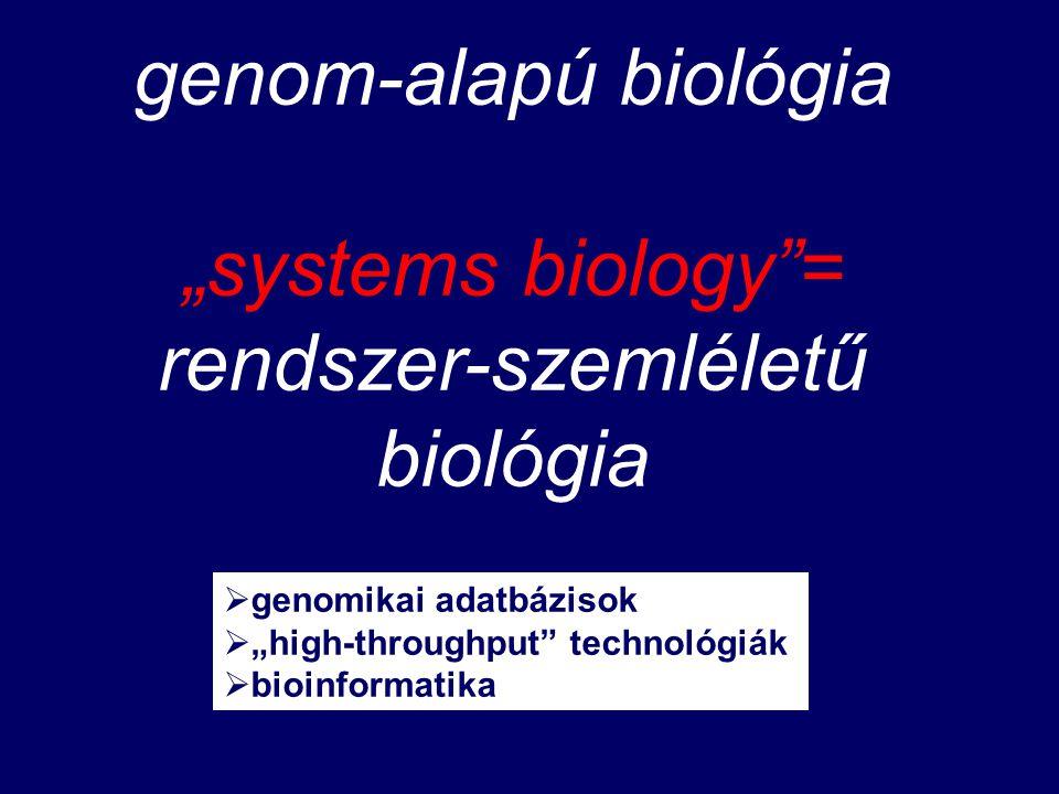 """genom-alapú biológia """"systems biology = rendszer-szemléletű biológia  genomikai adatbázisok  """"high-throughput technológiák  bioinformatika"""