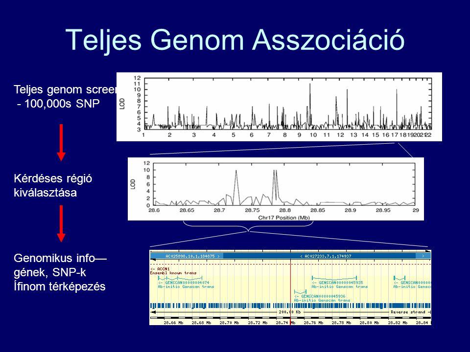 Teljes Genom Asszociáció *** ** Teljes genom screen - 100,000s SNP Kérdéses régió kiválasztása Genomikus info— gének, SNP-k Ífinom térképezés