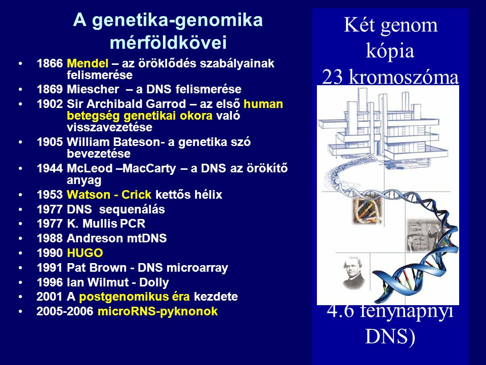 Biological dimensions Genome25.000-27.000 genes Transcriptome 1.000-10.000 mRNA/cell Proteome 500-150.000 proteins/cell Metabolome ????.