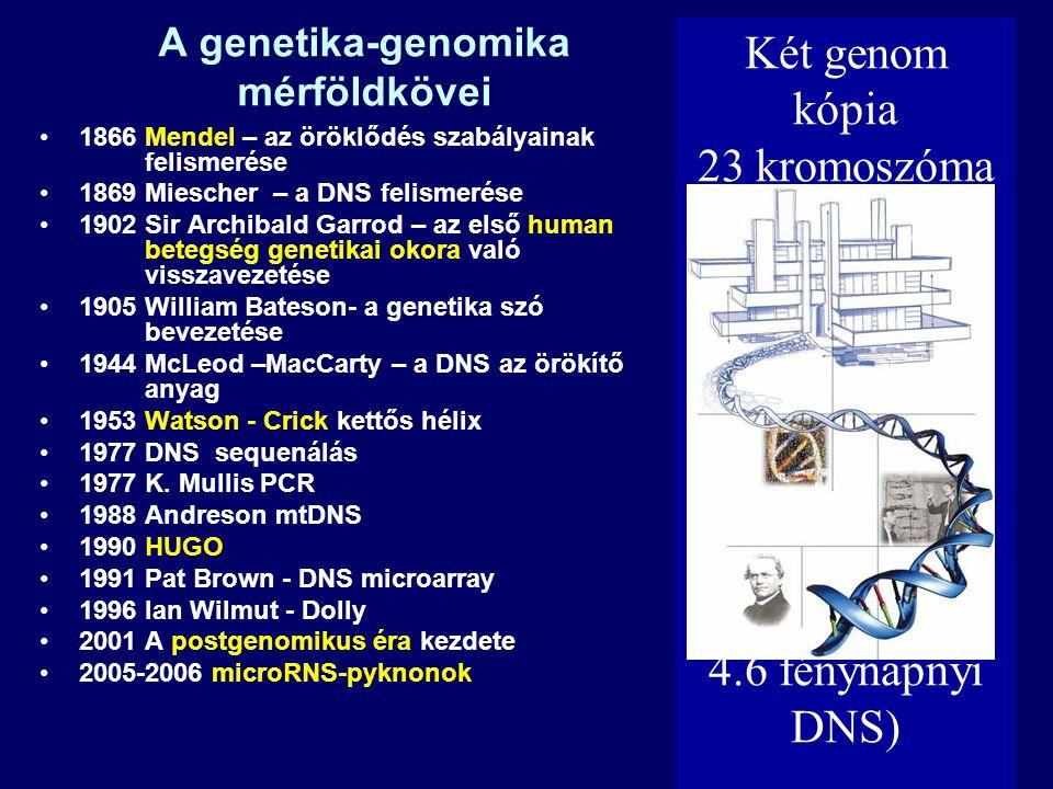 A genetika-genomika mérföldkövei 1866 Mendel – az öröklődés szabályainak felismerése 1869 Miescher – a DNS felismerése 1902 Sir Archibald Garrod – az első human betegség genetikai okora való visszavezetése 1905 William Bateson- a genetika szó bevezetése 1944 McLeod –MacCarty – a DNS az örökítő anyag 1953 Watson - Crick kettős hélix 1977 DNS sequenálás 1977 K.
