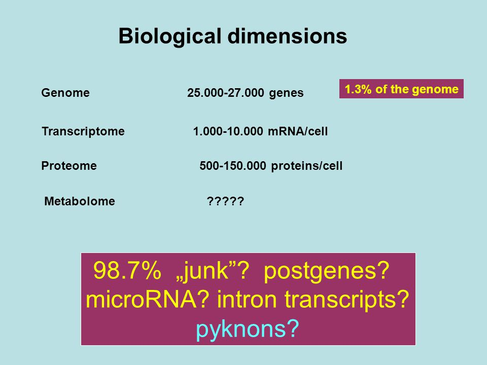 Biological dimensions Genome25.000-27.000 genes Transcriptome 1.000-10.000 mRNA/cell Proteome 500-150.000 proteins/cell Metabolome .