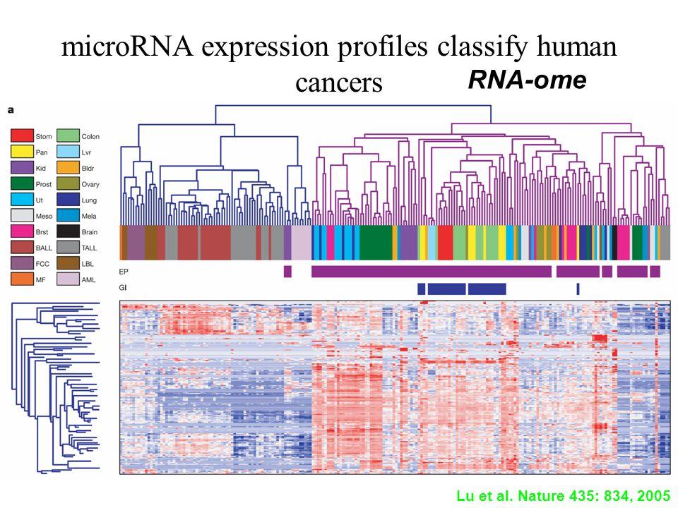 microRNA expression profiles classify human cancers Lu et al. Nature 435: 834, 2005 RNA-ome