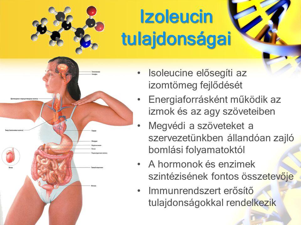 Izoleucin tulajdonságai Isoleucine elősegíti az izomtömeg fejlődését Energiaforrásként működik az izmok és az agy szöveteiben Megvédi a szöveteket a szervezetünkben állandóan zajló bomlási folyamatoktól A hormonok és enzimek szintézisének fontos összetevője Immunrendszert erősítő tulajdonságokkal rendelkezik