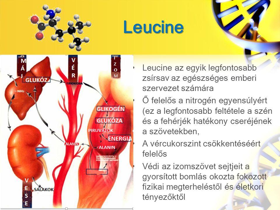 Leucine Leucine az egyik legfontosabb zsírsav az egészséges emberi szervezet számára Ő felelős a nitrogén egyensúlyért (ez a legfontosabb feltétele a szén és a fehérjék hatékony cseréjének a szövetekben, A vércukorszint csökkentéséért felelős Védi az izomszövet sejtjeit a gyorsított bomlás okozta fokozott fizikai megterheléstől és életkori tényezőktől