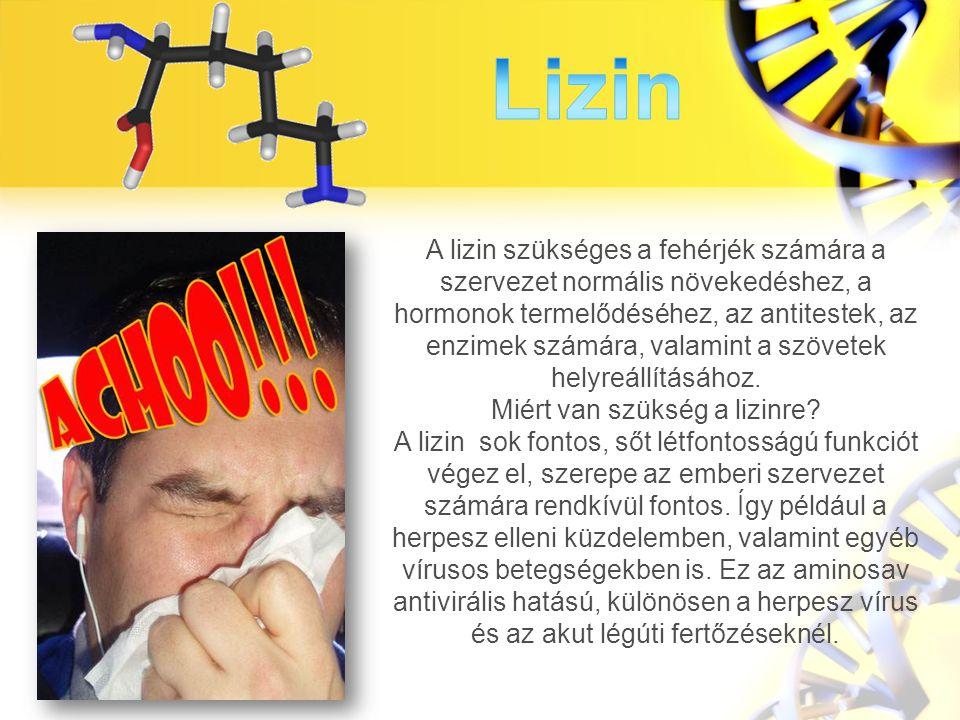 A lizin szükséges a fehérjék számára a szervezet normális növekedéshez, a hormonok termelődéséhez, az antitestek, az enzimek számára, valamint a szövetek helyreállításához.